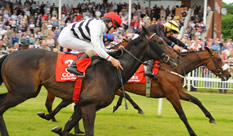 Winning at Cork Racecourse